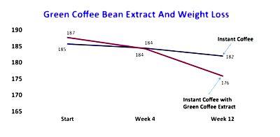 experimento green coffe hace perder peso